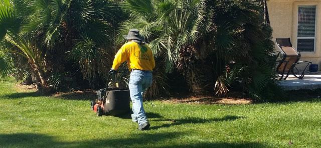 Southern Nevada Landscape Maintenance Services